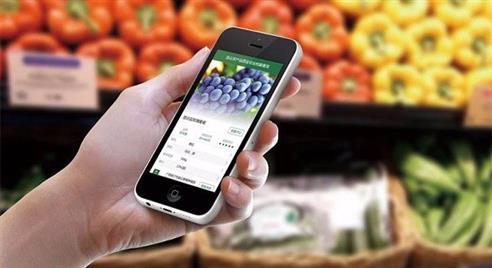 """区块链技术为农产品溯源和监管上""""安全锁"""""""